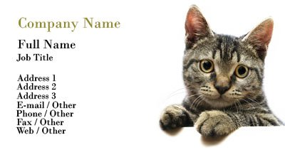 business card templates pet sitting